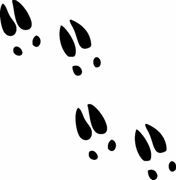 273 Yak Namalyuvati Sldi as well 256353403761630368 as well 100925 233630 772048 likewise Jungle Animal Prints 3 1064961 additionally Deer Hoof Prints. on deer feet clip art